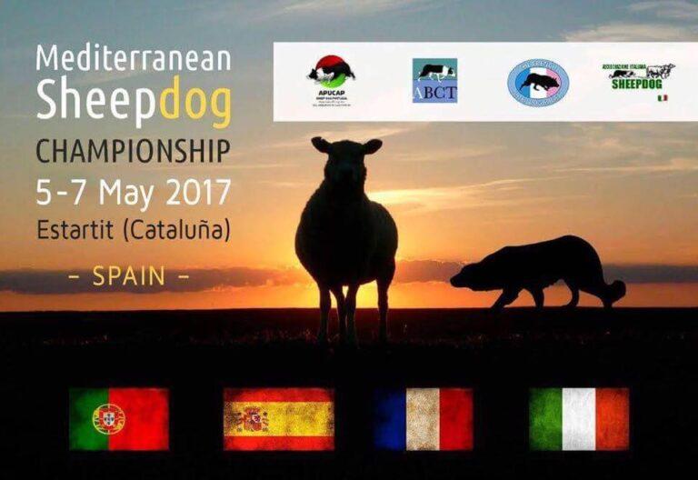 Campeonato Mediterráneo